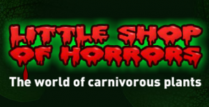 Little Shop Of Horrors Promo Codes