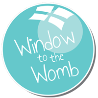 Window To The Womb Promo Codes